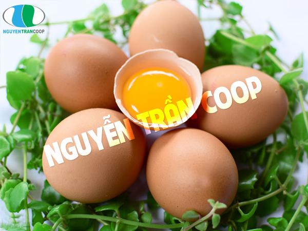 Trứng mẹ bầu ăn giúp con bú tăng cân nhanh