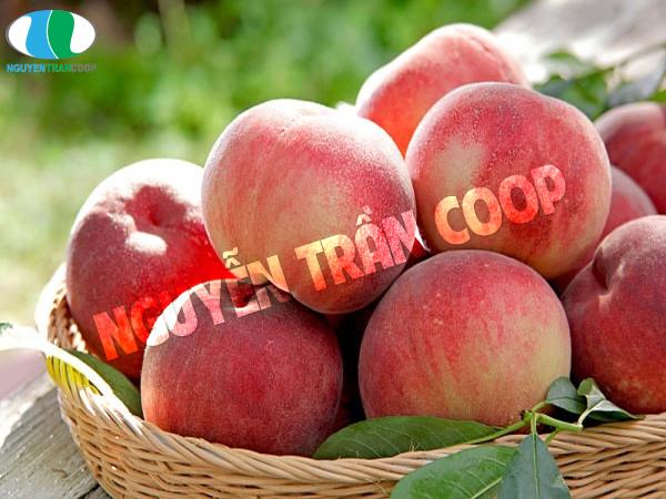 Đào là hoa quả mẹ bầu ăn giúp con bú tăng cân nhanh
