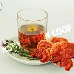Những loại trà thảo dược giúp giải độc gan, tốt cho sức khỏe