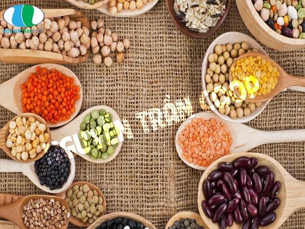 Các loại đậu là thực phẩm cung cấp dinh dưỡng giúp con bú tăng cân