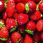 Thực phẩm dinh dưỡng giúp trẻ thông minh cho độ tuổi từ 0 đến 3 tuổi ( phần 1 )