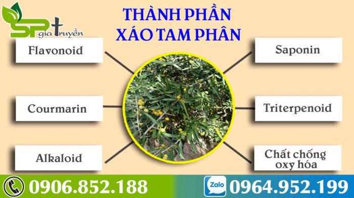 thanh-phan-xao-tam-phan-1