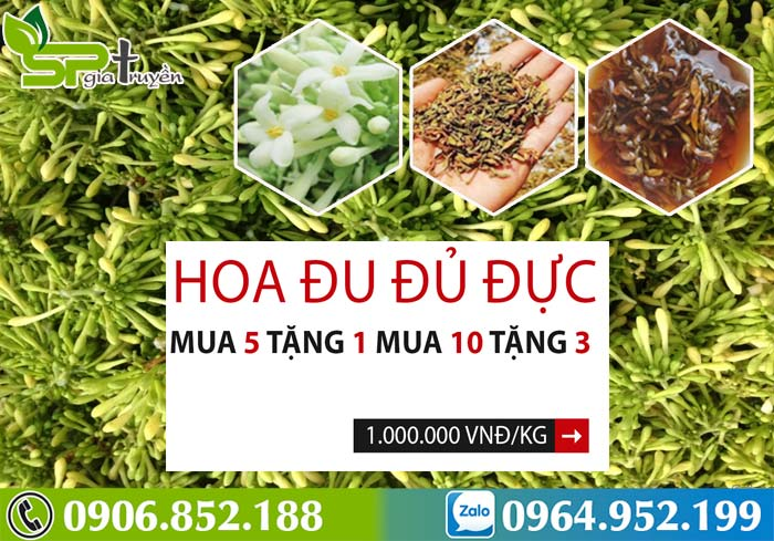 hoa-du-du-duc-gia-bao-nhieu-1kg