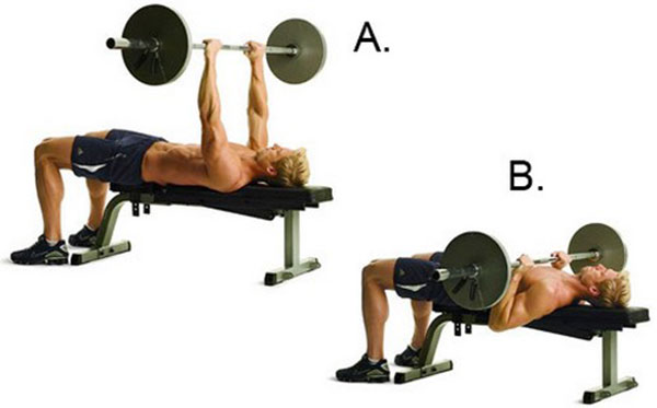 bai-tap-Barbell-Bench-Press