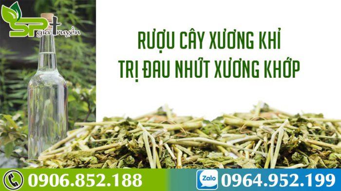 cay-xuong-khi-ngam-ruou-3