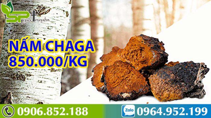 nam-chaga-5