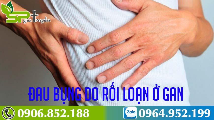 roi-loan-chuc-nang-gan-1