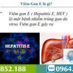 Bệnh viêm gan E là gì? Nguyên nhân và cách điều trị