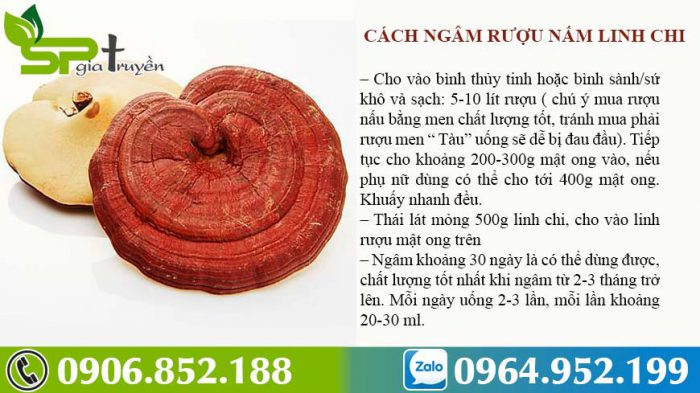 cach-ngam-ruou-nam-linh-chi