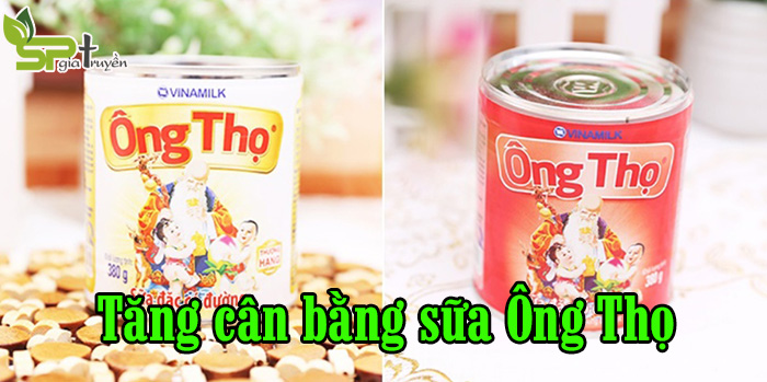cach-tang-can-bang-sua-ong-tho