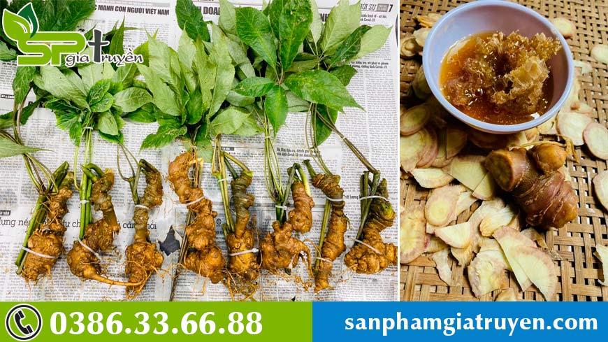 sam-ngoc-linh-tang-cuong-suc-de-khang-phong-chong-dich-covid-19